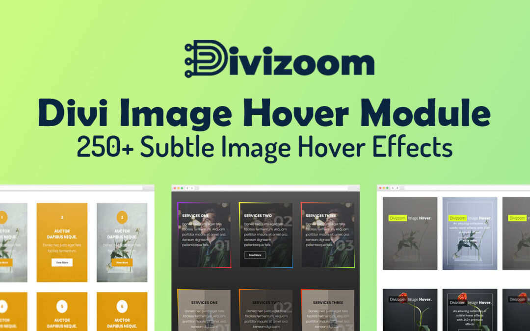 Divi image hover plugin overview